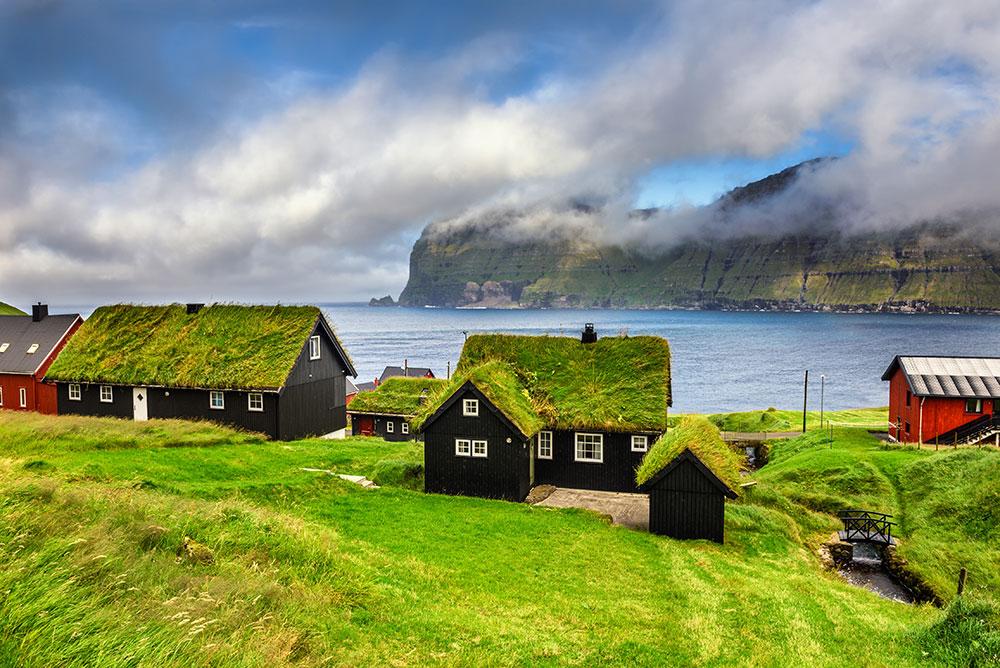 prednosti živih krovova